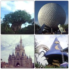 Walt Disney World Resort in Lake Buena Vista, FL  time for another visit