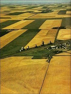 Aerial view of fields, Saskatchewan Prairie, Canada Ontario, British Columbia, Rocky Mountains, Province Du Canada, Canadian Prairies, Saskatchewan Canada, Vancouver, Canada Eh, Equador