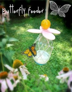 Vlinderlokker http://motherrising.blogspot.nl/2011/07/they-carry-me-butterflies-feeder.html?m=1