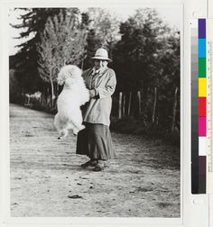 [Gertrude Stein and her jumping poodle, Basket.]