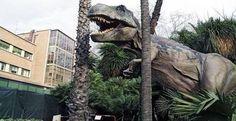 Dinosauri in carne e ossa - La Sapienza