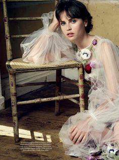 """""""An English Rose"""" Felicity Jones by David Slijper - Harper's Bazaar UK November 2016"""