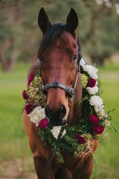 Floral wreathed horse