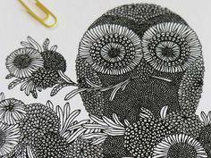 owl by Sasha Prood