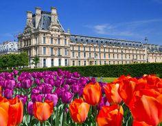 Musée du Louvre #louvre #spring #paris