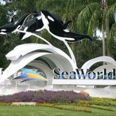 SeaWorld, Orlando FL