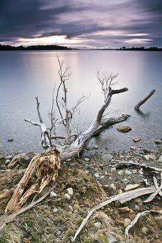 South of Eaglehawk Neck, Tasman Peninsula, Tasmania