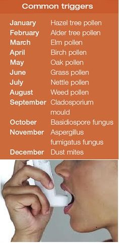 """Use these tips to prevent asthma.  You may also think about adding some """"Indoor Air Quality"""" products to your home heating/cooling system to trap pollen and other allergens.  www.1stchoiceheating.com"""
