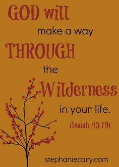 Love this thought!  #God will make a way through the wilderness in your life   #Isaiah #Christian #encouragement #quote  www.stephaniecary.com