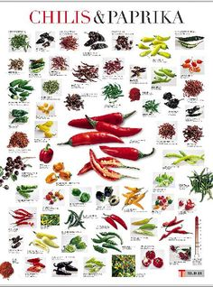 . Hot Sauce Recipes, Chilli Recipes, Mexican Food Recipes, Tomatillo Recipes, Types Of Chili Peppers, Chilli Spice, Chile Picante, Chilli Plant, Barbacoa