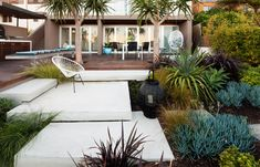 Beautiful succulent design, contrasting cool and warm colors and textures with the simple concrete slabs.