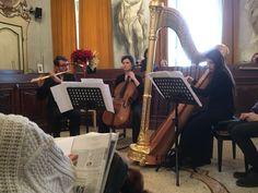 """18/12/2016 - """"Viaggio dal Barocco al Novecento europeo"""" - I concerti di Palazzo Mezzabarba"""