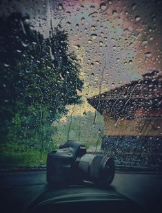 My Photo Gallery, Photo Galleries, My Photos