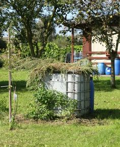 """IBC TOTE: It is big and durable so IBC totes make a great """"repurposed"""" COMPOST BIN!"""