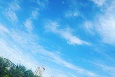 Watching the clouds from my window 3.0.  Desde mi #ventana 3.0.  #nubes #clouds #ventana #sky☁ #photography #fotografias #windows #photographyislove #verano #sunset #summer #cielo #samsungs5 #edificios #guayaquil #guayaquilesmidestino #sky #beatiful #photographyislifee #colorsofsky #fotografia #colorsofsunset #samsungs4#horizon #horizonte #blue #clouds #ecuador🇪🇨 #heroe593 #paisajesecuador593
