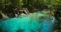 Swimming and Cliff Jumping at Blue Springs, FL