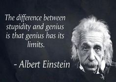 the difference between genius and stupidity - Google Search