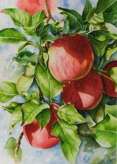Watercolor painting demonstration of red apples by Lisa Hill