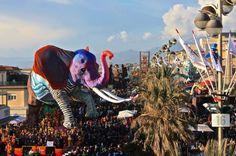Per quattro domeniche - 7, 14, 21 e 28 febbraio - e sabato 5 marzo si rinnova lo spettacolo dei carri di cartapesta, con fuochi d'artificio e feste nei rioni