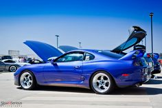 Supra | Flickr - Photo Sharing!