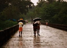 SOUTH TAMIL NADU AND KERALA TO WITNESS INTENSE RAIN IN NEXT 24 HOURS  http://www.skymetweather.com/content/weather-news-and-analysis/south-tamil-nadu-and-kerala-to-witness-intense-rain-in-next-24-hours/