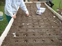How to make a ferrocement raised garden bed.