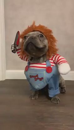 Animals Discover dog halloween costumes Im Gonna Getcha Funny Dog Memes Funny Animal Memes Cute Funny Animals Funny Animal Pictures Cute Baby Animals Funny Cute Funny Dog Videos Cute Animal Humor Cut Animals Funny Animal Jokes, Funny Dog Memes, Funny Animal Videos, Cute Funny Animals, Funny Animal Pictures, Funny Dogs, So Funny, Cute Animal Humor, Funny Looking Animals