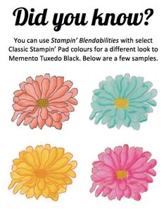 Did you know Stampin' Blendabilities Markers work well with many of the Classic Stampin' Pads? Click the link (Pin) to view the complete list of compatible ink pads. #Blendabilities #StampinUp