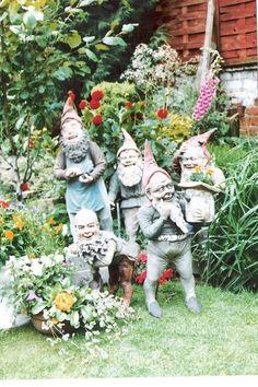 Bildergebnis für maresch gnome