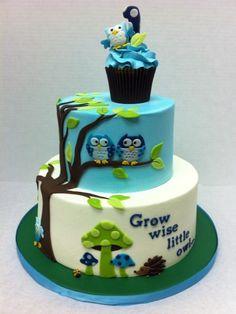 "Blue & Green ""Grow Wise"" Owl Cake"