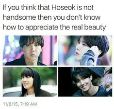 If you think that Hoseok is not handsome then it's your damn opinion that I don't care about