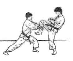 Resultado de imagen de juji uke