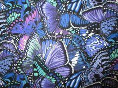 Butterfly Dramatic Butterflies Blue Purple Cotton Fabric FQ  #ElizabethsStudio