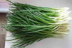 Így lehet télen is temérdek mennyiségű újhagymád ültetés nélkül! Green Onions Growing, Growing Greens, Organic Gardening, Gardening Tips, Kitchen Gardening, Flower Gardening, Dream Garden, Home And Garden, Garden Equipment