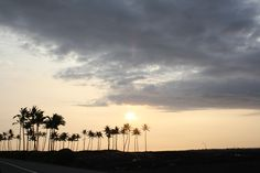 . . . silhouette of palm trees decorate the barren lava fields . . . Waikoloa on the Big Island of Hawaii.  5:23pm  Pacific Time