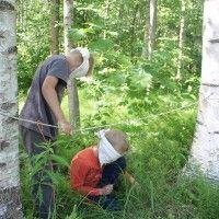Aistiretki lähiympäristöön (ryhmätehtävä)