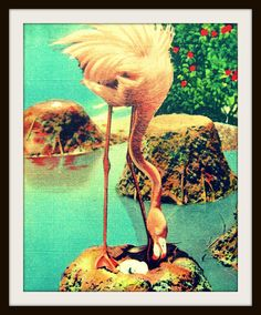 Pin it to Win it! See my profile for details.  PINK FLAMINGO art  photo 1940s beach house 11x14 photo