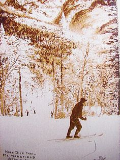 "Nose Dive Trail - Mount Mansfield, Stowe VT. ""1930s postcard shows skier on Nosedive — before lifts."""