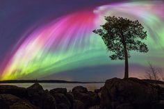 Aurora - Jyväskylä, Finland