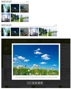 BT Image Gallery is a #Responsive #Joomla #Extension. This module can be used to introduce products or showcase #image by displaying items from various sources (#YouTube, #Picasa, #Flickr, #Phoca, computer folder) and #video (from #Youtube) with beautiful sliding and zooming effects. #gallery