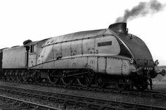 """4468 """"Mallard"""" LNER World steam record holder. Diesel Locomotive, Steam Locomotive, Diesel Punk, Steam Railway, Trains, British Rail, Train Engines, Mallard, Steam Engine"""