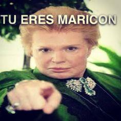 Tu eres maricon! Lmaoo! You are gay!