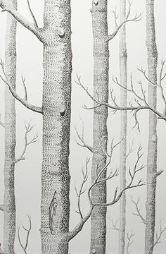 <3 COLE & SON Woods wallpaper