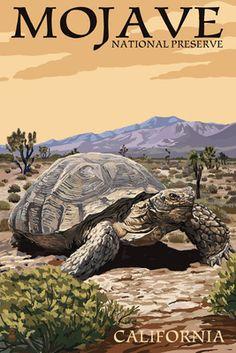 Tortoise - Mojave National Preserve, California - Lantern Press Artwork (Art Print Available) National Park Posters, Us National Parks, Party Vintage, Mojave National Preserve, Voyage Usa, West Coast Road Trip, Lake Mead, California Art, Vintage California