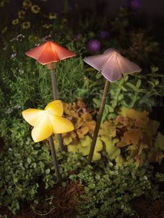 Discover Kichler's low voltage outdoor landscape lighting with hardscape lighting, path lighting, deck & patio lighting & spread landscape lights including LED. Garden Path Lighting, Led Garden Lights, Deck Lighting, Solar Lights, Path Lights, Exterior Lighting, Garden Deco, Garden Art, Outdoor Landscaping