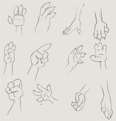 Three fingered paw tutorial
