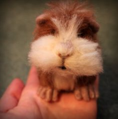 Needle felted Guinea pig by Fittobeloved on Etsy, £30.00. Fit to be Loved [United Kingdom] - https://www.etsy.com/shop/Fittobeloved #guineapig