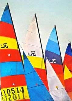 line the Michigan beach with Hobie Cats...