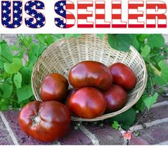 30 Organically Grown Paul Robeson Tomato Seeds Heirloom Sweet Non GMO RARE USA | eBay