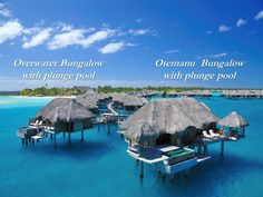 Four Seasons Bora Bora Resort -overwater bungalow with private plunge pool!